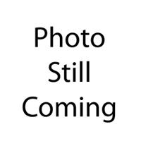 alt    Julia Stiles