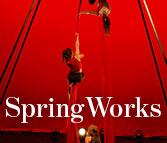 springworks ad