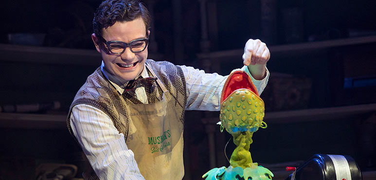 André Morin as Seymour Krelborn in Little Shop of Horrors. Photography by Chris Young.