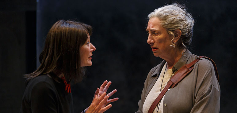 Sarah Orenstein (left) as Norah and Deb Filler as Leah in Birds of a Kind. Photography by David Hou.
